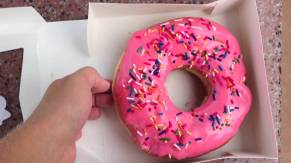 simpsons donut