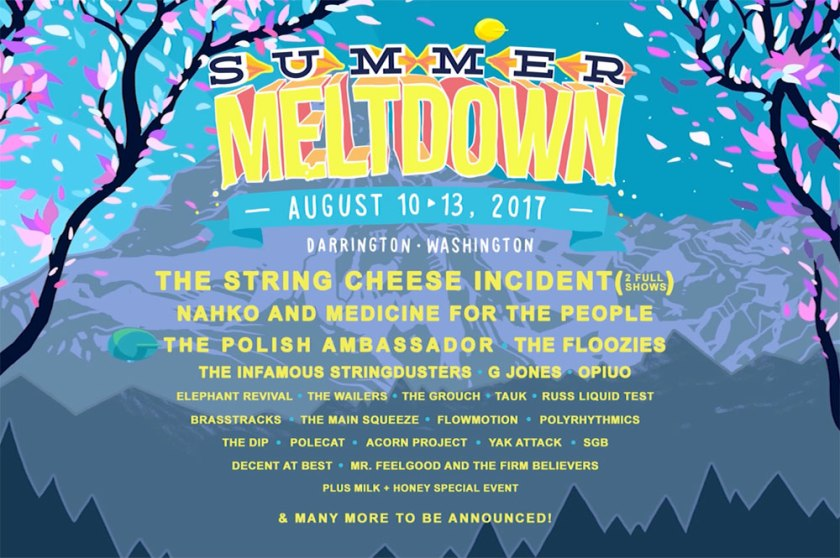 Summer Meltdown 2017 !